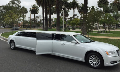 12-Pas-White-Chrysler-500x300 Fleet Of Limousines