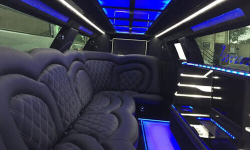 12-Pass-Chrysler-Inside-500x300 Fleet Of Limousines